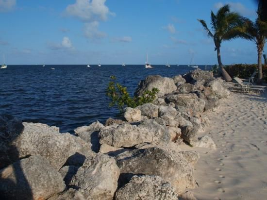 Key Largo Vacations: 86 Things to Do in Key Largo, FL | TripAdvisor