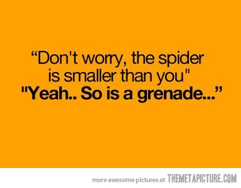 Not scared of spiders... but it a good point.