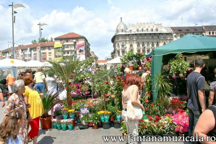 flowers festival Craiova 2 - From May 30 to June 2nd the entire Craiova City Center became the host for the Craiova Flowers Festival 2008. All the area near the musical fountain was inundated with flowers and decorative objects. Hosted by www.iCraiova.com