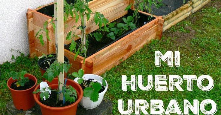 ¿Qué te parecería montar un huerto urbano en casa?