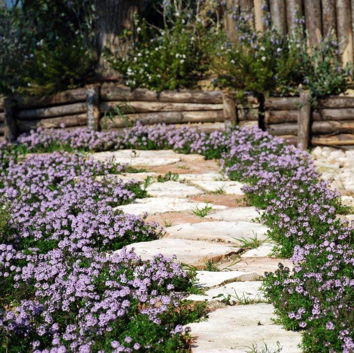 Come fare un giardino mediterraneo lk76 regardsdefemmes for Decorazione giardini stile 700