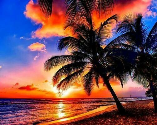 Amazing sunset