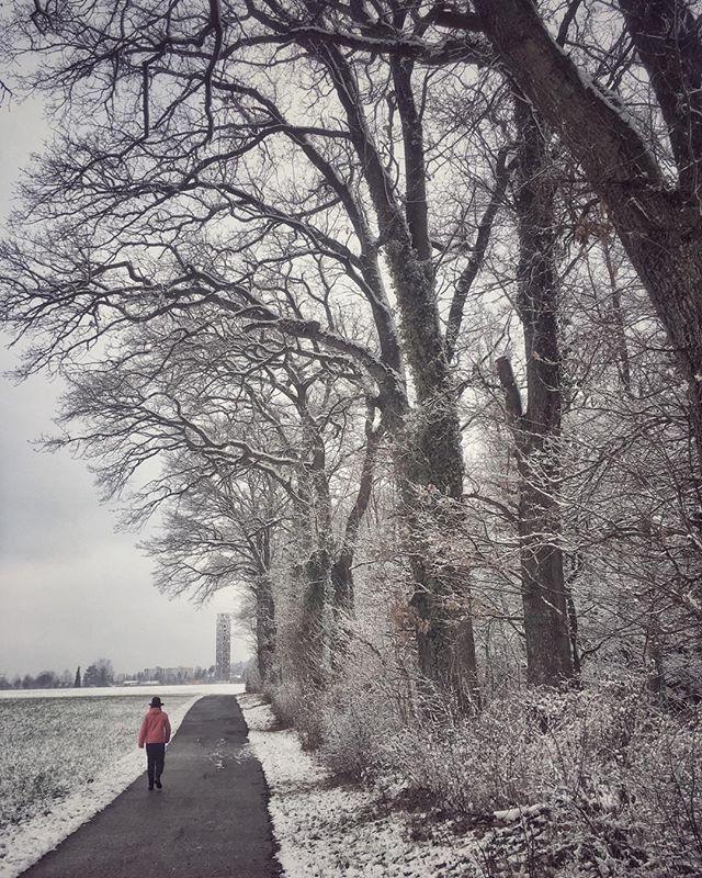 Am Waldrand #schnee #wald #winter weg #Waldrand #wetzgau #Himmelsstürmer