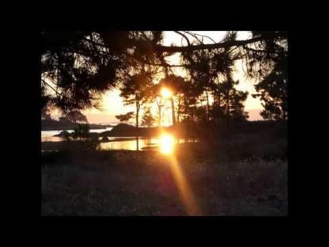 MINDFULNESS: SANANDO EL CUERPO, EL CORAZÓN Y LA MENTE - YouTube