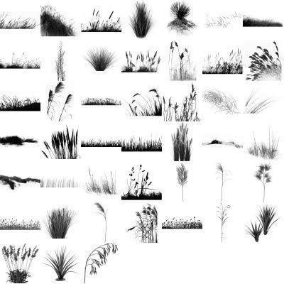 High Resolution Grass Brushes #grass #brush #landscape #landscaping #tools  #set #ps #garden #digital #rendering