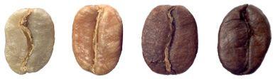 chicco di caffè    Les grains de café perdent de leur humidité et leur couleur passe du ...