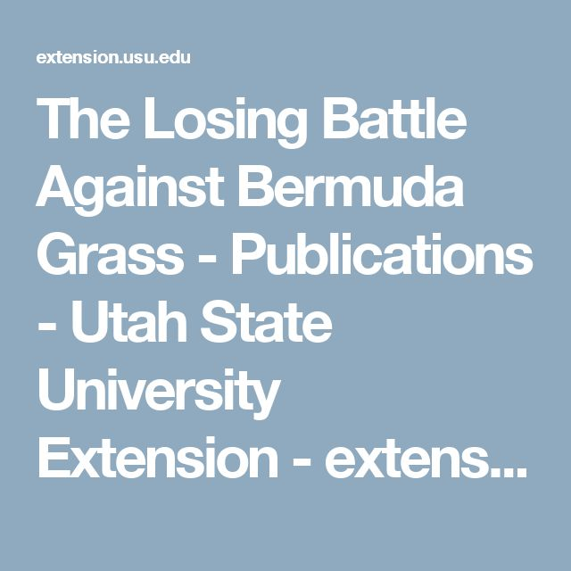 The Losing Battle Against Bermuda Grass - Publications - Utah State University Extension - extension.usu.edu