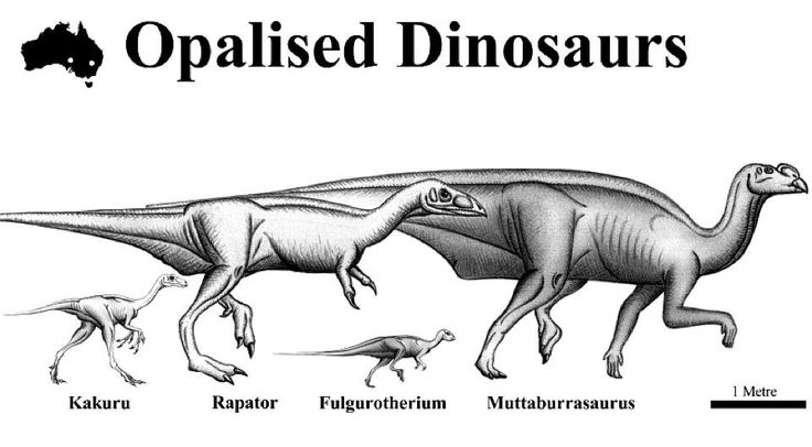 Dinosaur Remains Have Been Found In The Opal Fields Of