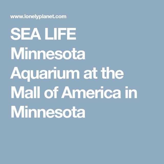 SEA LIFE Minnesota Aquarium at the Mall of America in Minnesota