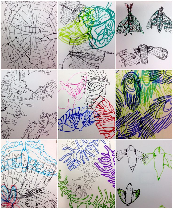 Some of the beautiful continuous line drawings created as part of the yr 12 induction project