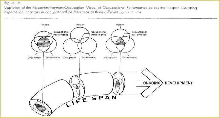 the lifespan perspective for social work practice social work essay Theory application & integration with practice are demonstrated this outline is only a summary of highlights all theorists, ideas, and concepts are not included because human behavior is complex and the social work profession is broad, numerous theories are utilized for.