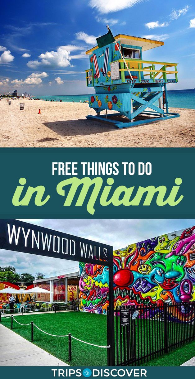 Top 12 Free Things To Do In Miami Tripstodiscover Miami Vacation Miami Travel Miami Travel Guide
