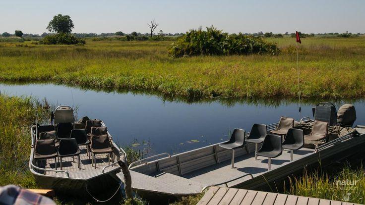 Mit solchen Booten wirst du durch das Okavangodelta geführt. Du brauchst dich nur auf die Natur konzentrieren. Davon gibt es allerdings jede Menge :-)