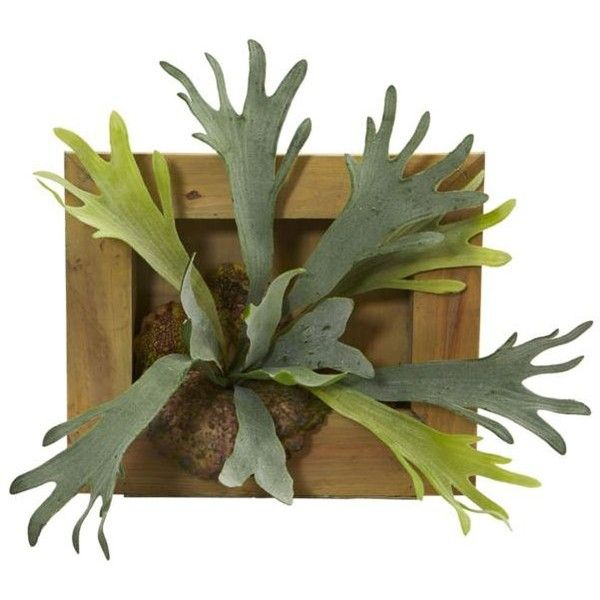 Nearly Natural  Staghorn Artificial Plant ($80) ❤ liked on Polyvore featuring home, home decor, floral decor, green, artificial silk plants, nearly natural silk plants, nearly natural, green home decor and artificial plants