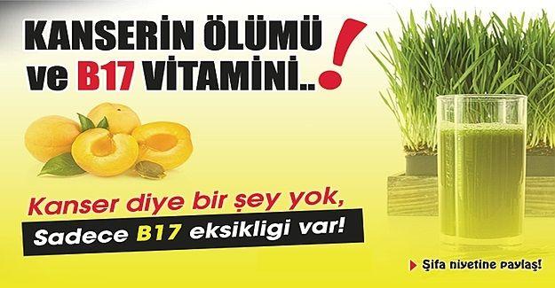 Kanserin En Büyük Nedeni B17 Vitamini Eksikliğidir Peki B17 Vitamini Hangi Besinlerde Var