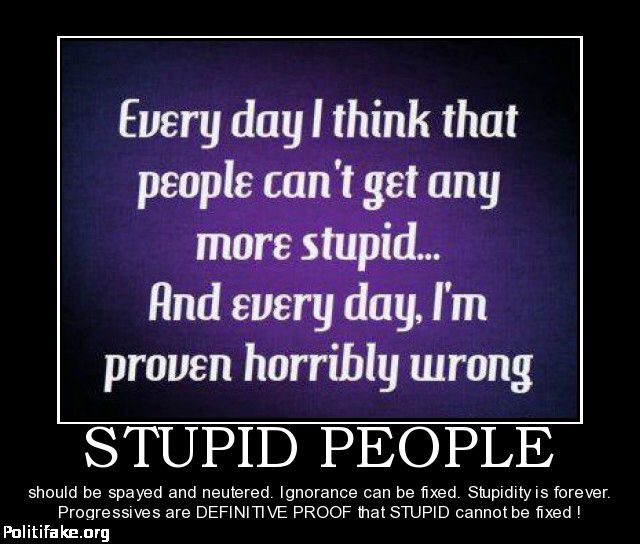 Stupid Funny Quotes And Sayings: Funny Quotes About Stupidity And Ignorance. QuotesGram