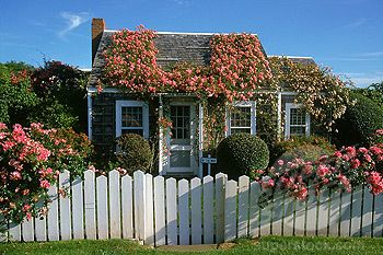 Nantucket: Favorit Place, Guest Cottages, Current House, Dream Homes, Nantucket Cottages, Fairies House, Enchanted Cottages, Dream Spaces, Roses Cov Cottages