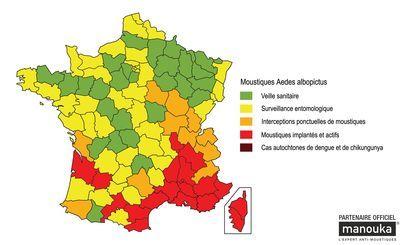 Chikungunya: comment se protéger du moustique tigre ?