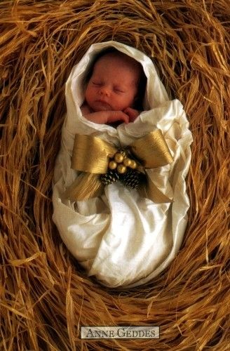 Anne Geddes Galleries ~Christmas~