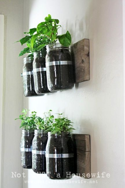 My own spin... try with wine bottles and pallet slats. Mason jar wall planters.