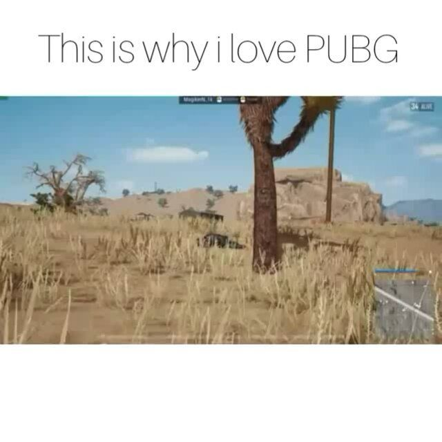 Pubg logic man you gotta love it  For more funny memes and video follow me @azri.max  Stay Awesome Tag Your Friends Goal: 10000 Follower  I am not owner of the video Just reposting with credit  Tags (ignore) #gta5 #gamingmemes #gta5online #gtaonline #gamestagram #gaming #gtav #blackops2 #battlefield1 #blackops3 #ps3 #mw3 #xbox360 #mw2 #infinitewarfare #blackops #playstation #battlefield #xboxone #xbox #psn #ps4 #callofduty #modernwarfare #grandtheftauto5 #rainbowsixsieg