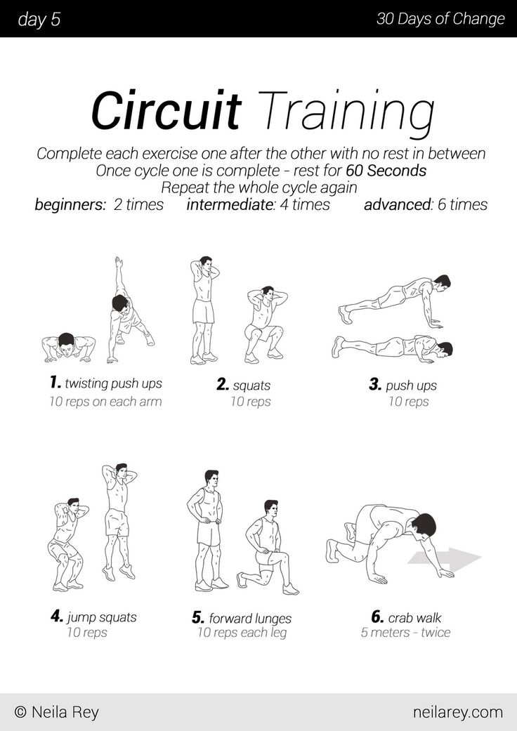 circuit exercises without equipment