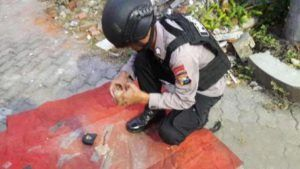 Masih Aktif Granat Nanas yang Ditemukan Kuli Bangunan Itu Tribratanews Polda Jatim