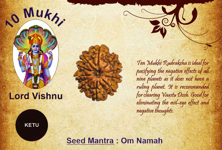 Benefits of Ten Mukhi Rudraksha Goddess: Lord Vishnu / Ruling Planet: Ketu Ten Mukhi Rudraksha is ideal for pacifying the negative effects of all nine planets as it does not have a ruling planet. It is recommended for clearing Vaastu Dosh. Good for eliminating the evil-eye effect and negative thoughts. http://www.rudralife.com/Rudraksha/details.php?id=17