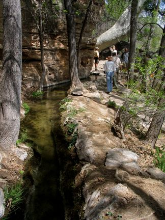 Montezuma Well & Castle 45 min South of Flagstaff, AZ. This is water channeled from the well above to the castle.