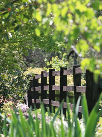 how to build a timber post and rail fence