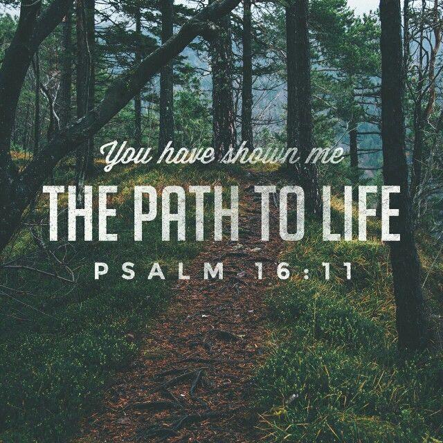 You have shown me the path to life - Psalm 16:11