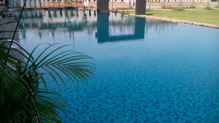 Swimming pools tiles design at Pune provide free product types of current items and will produce any designs you have.