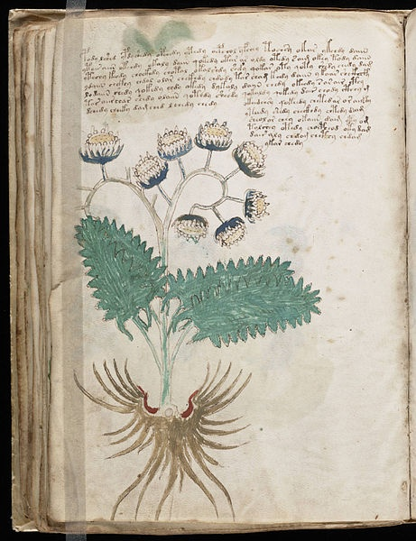 The Voynich Manuscript - Decoded?