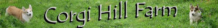 Corgi Hill by CorgiHillFarm on Etsy