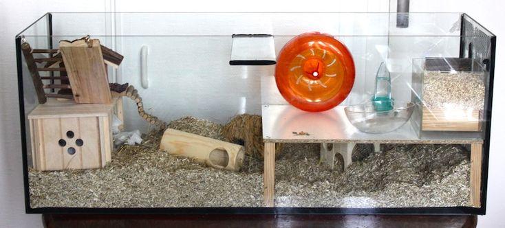 Aménagements et accessoires pour la cage - Le Hamster Russe