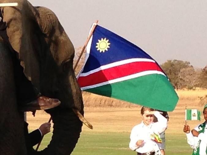 Elephants at Zebula