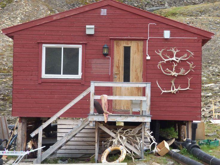 antlers at Longyearbyen