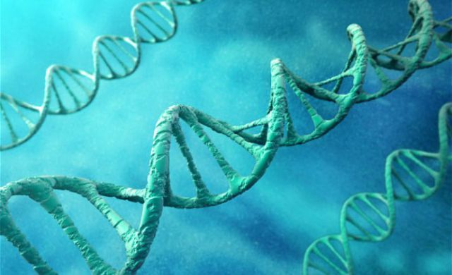 New Study Autism And Cancer Related To Human Fetal DNA In Vaccines - Photo 2