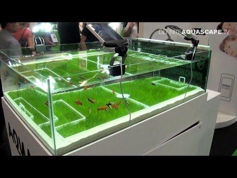 Aquarium Ideas from InterZoo 2012 - AquaEl (pt. 4)
