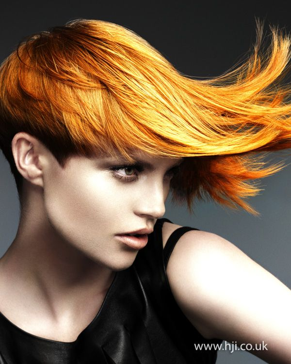 yellow hair style 124 best images about doo s with the exception of a 3634