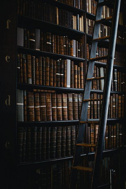 A Gentleman's Prospect, thecozythings: Trinity College Library, The…