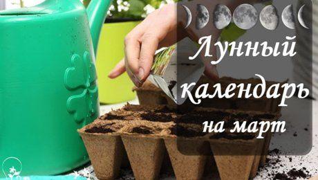 Лунный посевной календарь на март 2017 года садовода и огородника