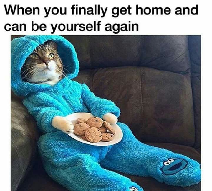 "LOL :D ""when you finally get home and can be yourself again"" that's funny shit. http://ibeebz.com"