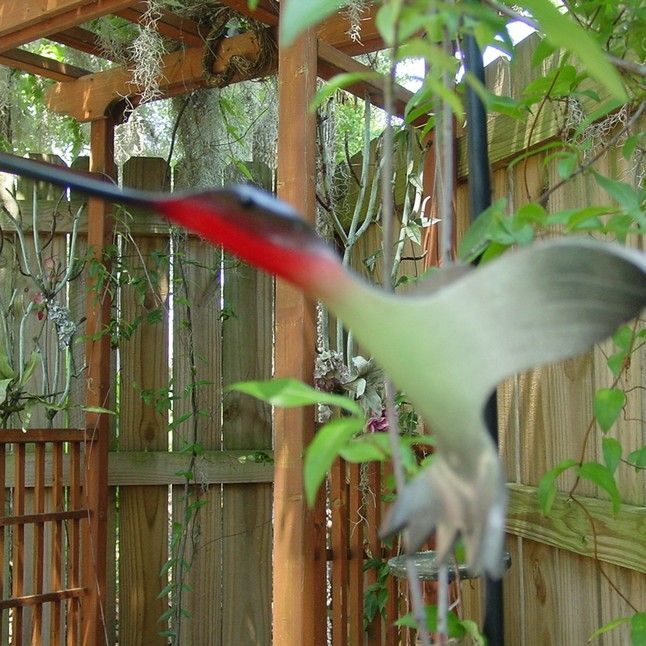 1000 images about pvc projects on pinterest for How to make pvc pipe birds