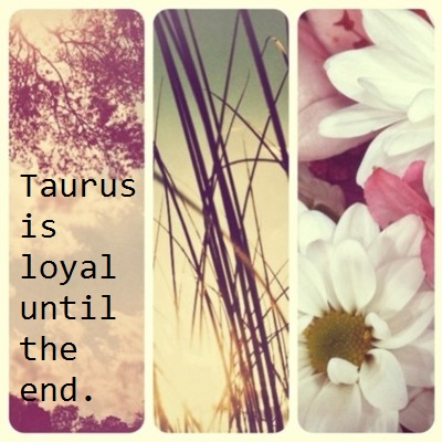 Taurus The Bull,,,yes,they are mostly....lol