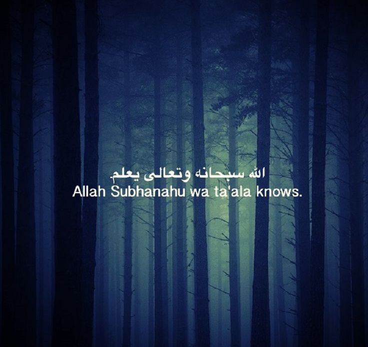 ALLAH Subhanahu wa ta'ala knows.....