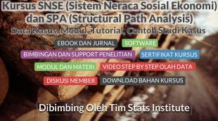 Pengolahan Data SNSE (Sistem Neraca Sosial Ekonomi) atau SAM (Social Accounting Matrix) dan SPA (Structural Path Analysis)