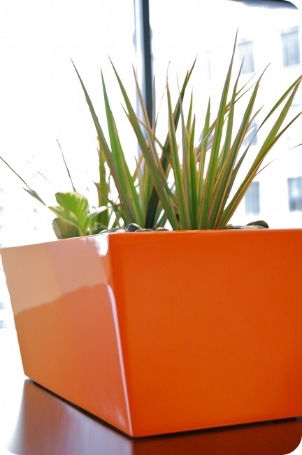 accent office interiors made this for interior office project bold orange w green accent walls accent office interiors