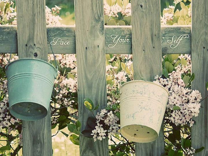 <3 fence, buckets, script. . .for the garden: Gardens Ideas, Buckets Hanging, Inspiration, Flowers Plants, Gardens Gates, Posts, Gardens Design, Hanging Plants On Fence, Dreams Gardens