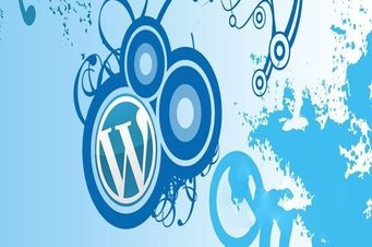 We offer WordPress Installation and Setup, Custom WordPress Theme Design, WordPress Widget Development and WordPress E-Commerce Sites. To know more on our Wordpress administrations.  get in touch with us now!